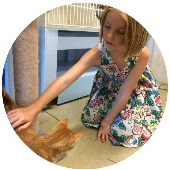 2018 Nanaimo SPCA camp girl and kitten  - circle.png